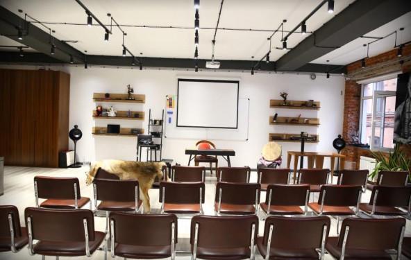 Конференц-зал премиум-класса - фото №2