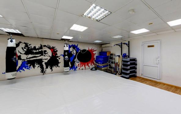 Мягкий зал №3 боевых искусств - фото №2
