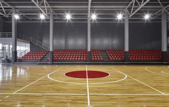 Профессиональная игровая арена с трибунами - фото №2