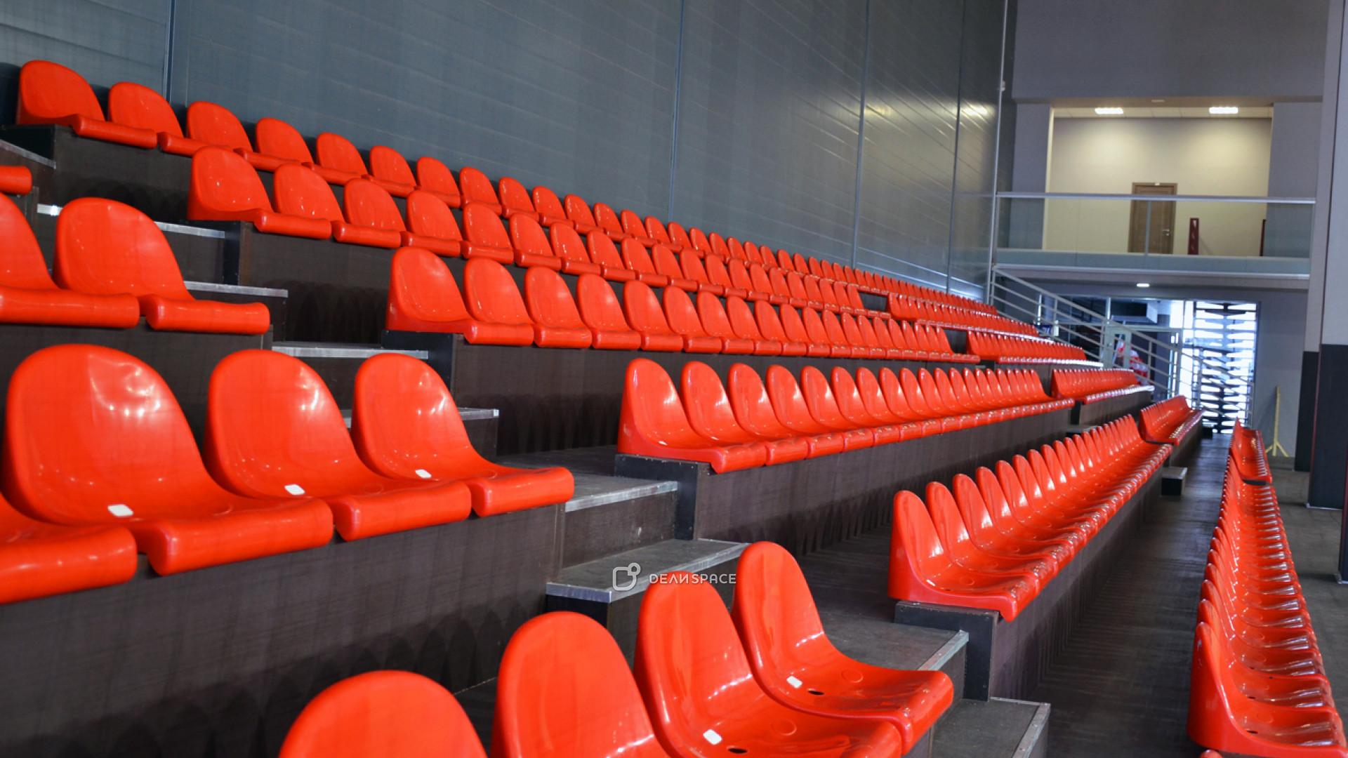 Профессиональная игровая арена с трибунами - фото №7