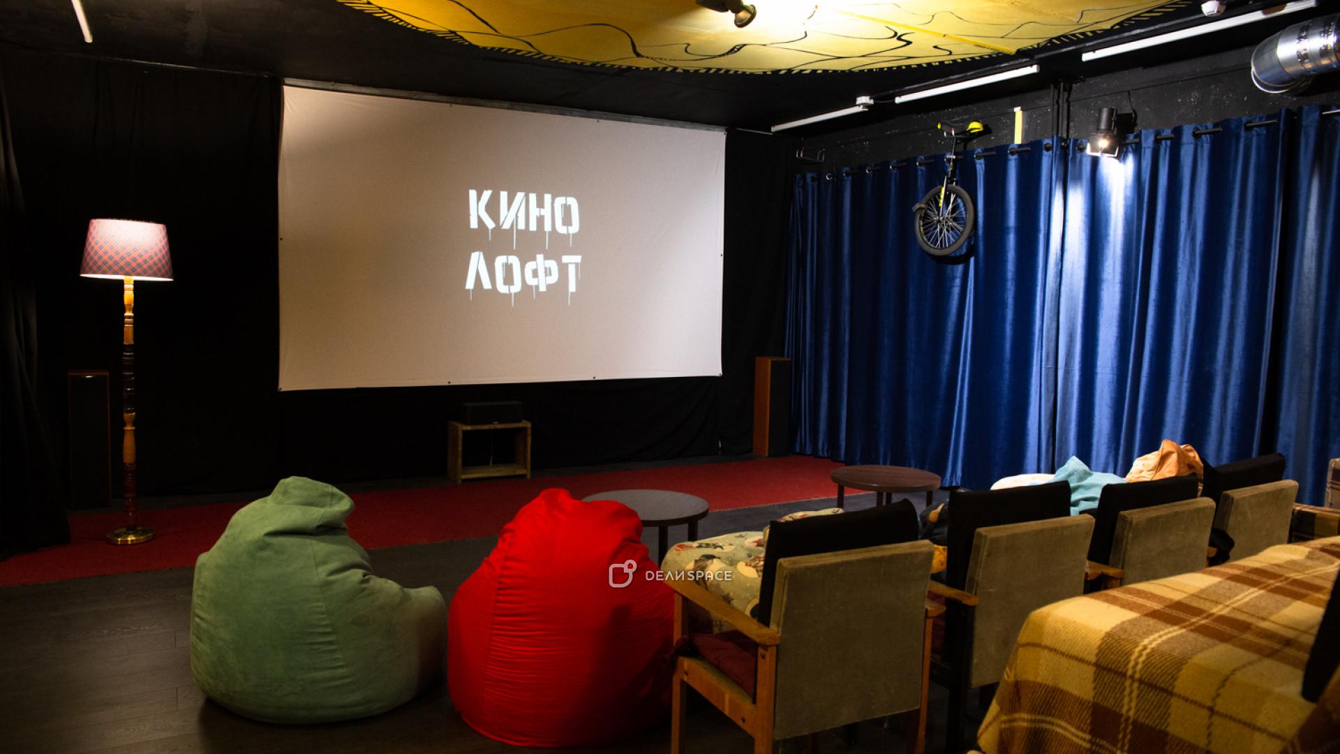 Кинолофт «Плетчатый клед» - фото №7